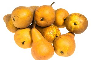 Bosc pears on white