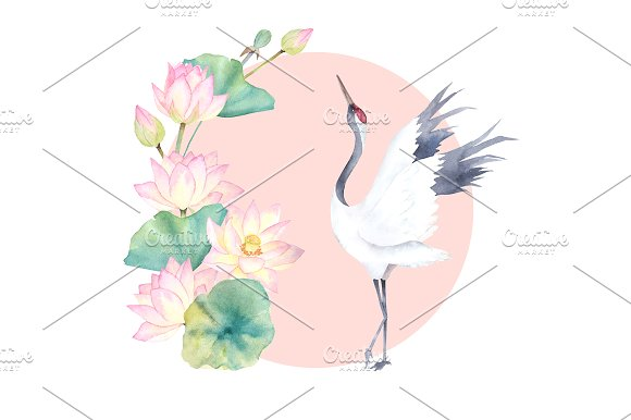 Watercolor Crane With Lotus