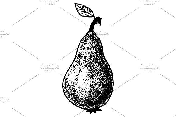 Fruit Doodle Illustration
