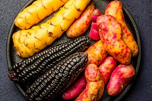 Peruvian raw ingredients for cooking black corn and sweet potatoes. Top view