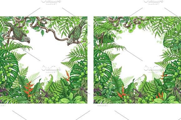 Square Tropical Frame