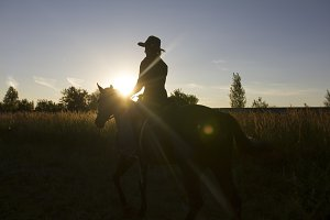 Silhouette of a woman riding a horse in front of sun - sunset or sunrise