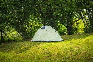 Tent under tree