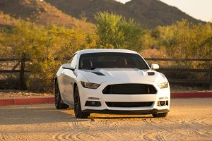 Ford Mustang 5.0 White