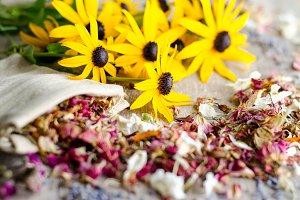 Essential Herbs 3