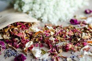 Essential Herbs 6