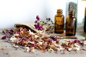 Essential Herbs 13