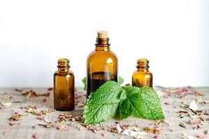 Essential Herbs 15