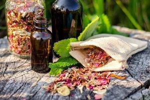Essential Herbs 17