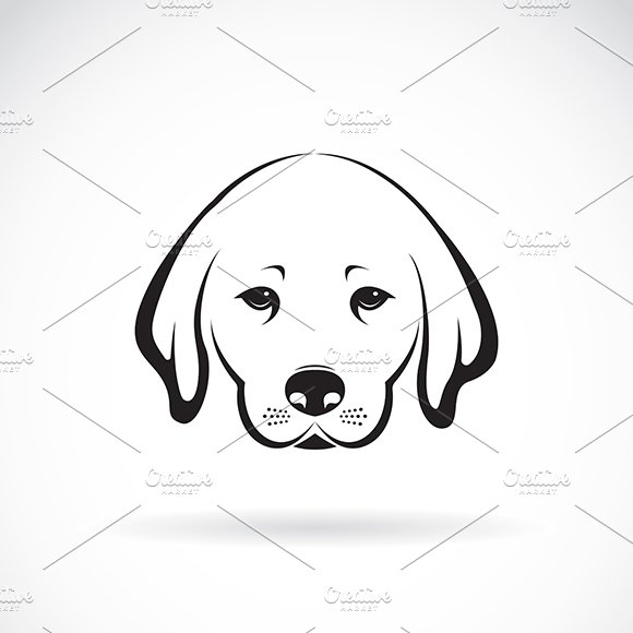 Vector Of Labrador Dog Head Pet