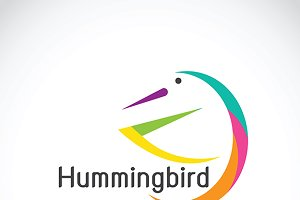 Vector of humming bird design. Logo