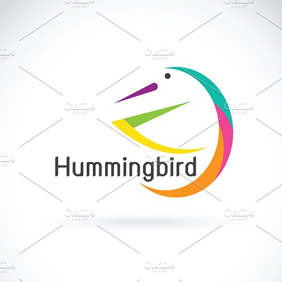 Vector Of Humming Bird Design Logo