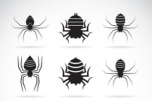 Vector group of spiders. Insect