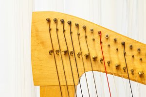 Celtic harp close-up lever and strings