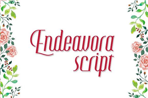 Endeavora