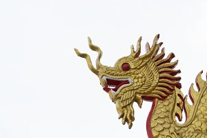 Image of Dragon statue on white back