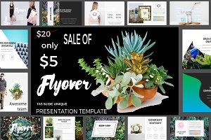 Fly Over Powerpoint - SALE OF