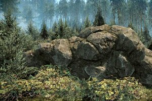 [Next-Gen] Forest Rock