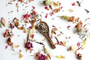 Essential Herbs 18