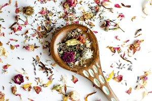 Essential Herbs 20