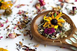 Essential Herbs 22