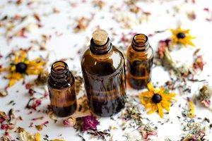 Essential Herbs 25