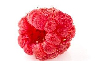 One raspberry isolated on white background macro