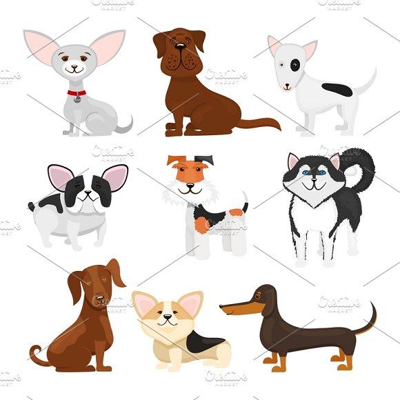 Dog Breeds Vector Cartoon Set
