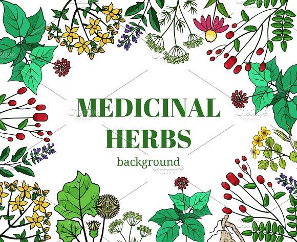 Wild Medicinal Herbs Background