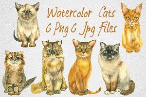 6 Cats by watercolor