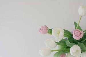 Moody Tulips - Feminine Styled Stock