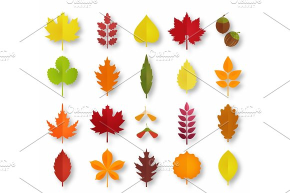 Paper Cut Autumn Leaves Set Fall Leaves Colorful Paper Collection Vector Paper Art Style Illustration