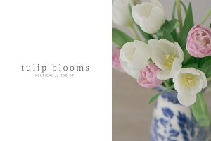 Tulip Styled Stock in Vintage Vase