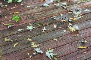 Rainy Autumn Porch