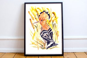 Watercolor Hoopoe Print