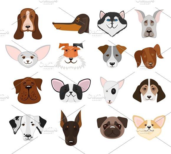 Set Of Muzzle Dogs