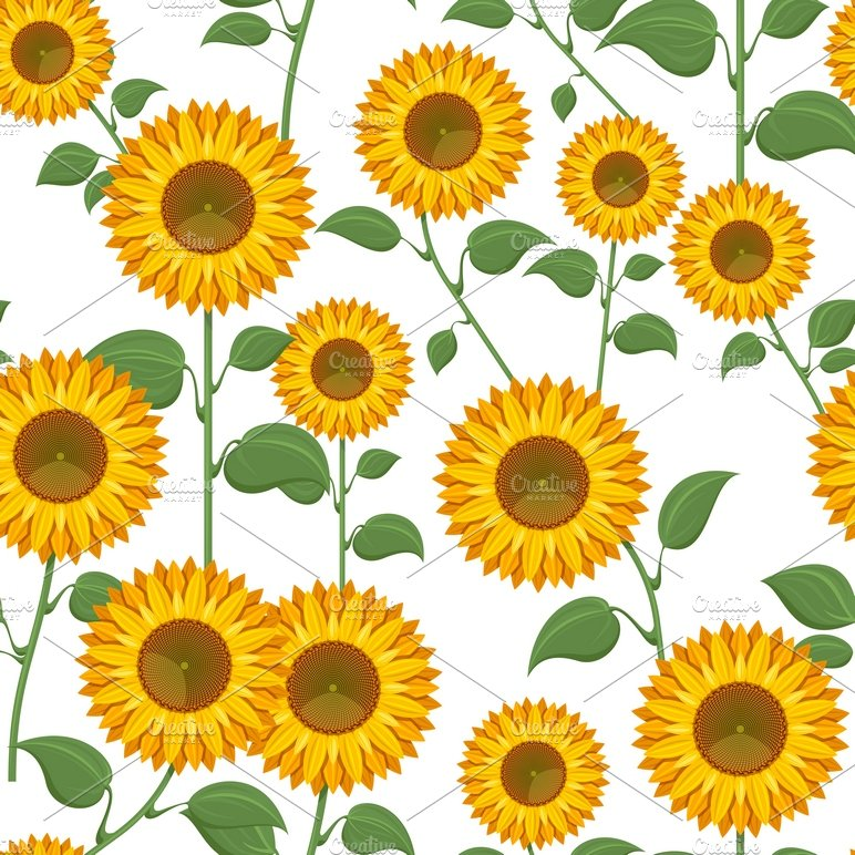 Sunflower seamless pattern ~ Graphic Patterns ~ Creative ...