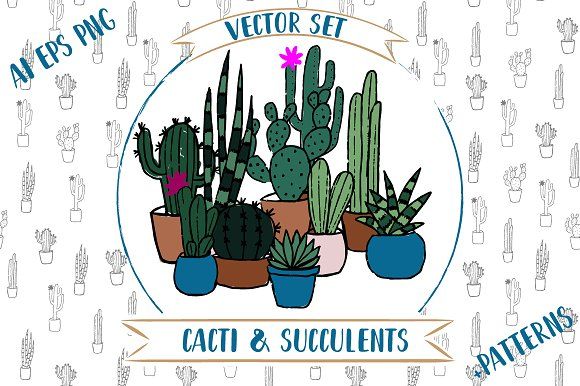 Vector Cacti And Succulents