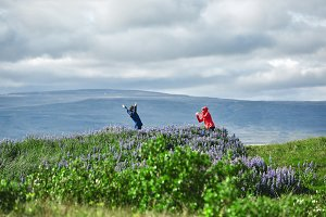 Tourists photograph each other against the background of a beautiful landscape in Iceland.