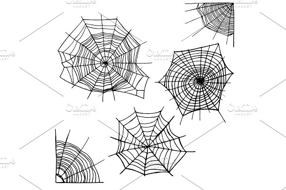 Different Spider Web Set Vector