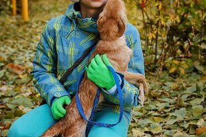 Girl and dog. Autumn