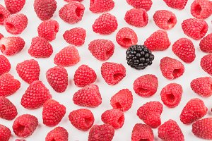 Background from raspberries and blackberries, isolated