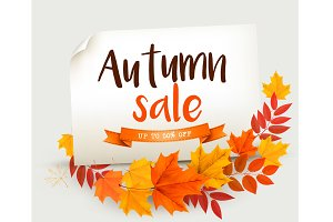 Autumn Sale Card