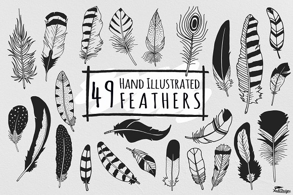 Hand Illustrated Feathers