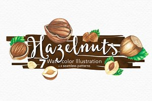 Hazelnuts Watercolors Illustration