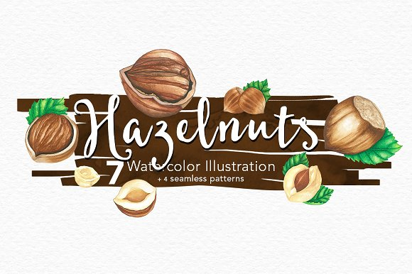 Hazelnuts Watercolors Illustration