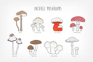 Set of ​uneatable mushrooms