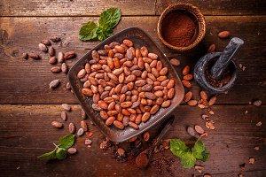 Cocoa (cacao) beans