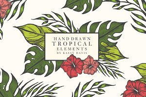 Hand Drawn Tropical Vector Elements