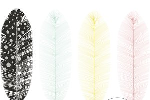 Feather Vector and PNG Graphics